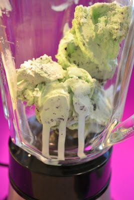 Ice Cream, Mint, Chocolate Chip, Blender