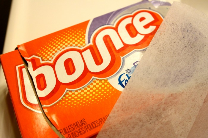 Bounce Dryer Sheets for hair static.