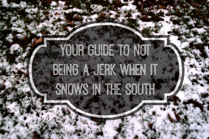Snows In The South