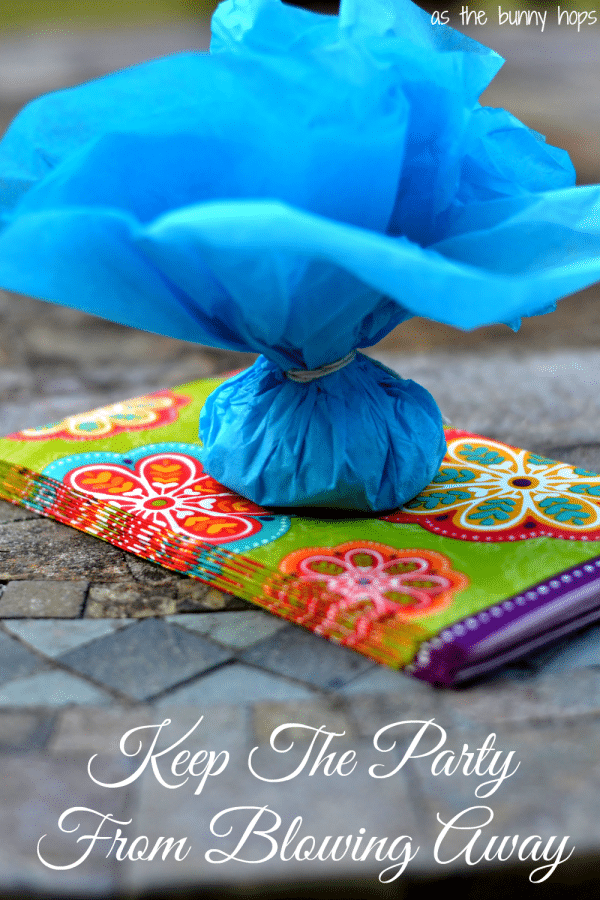 Keep the party from blowing away with easy napkin weights!