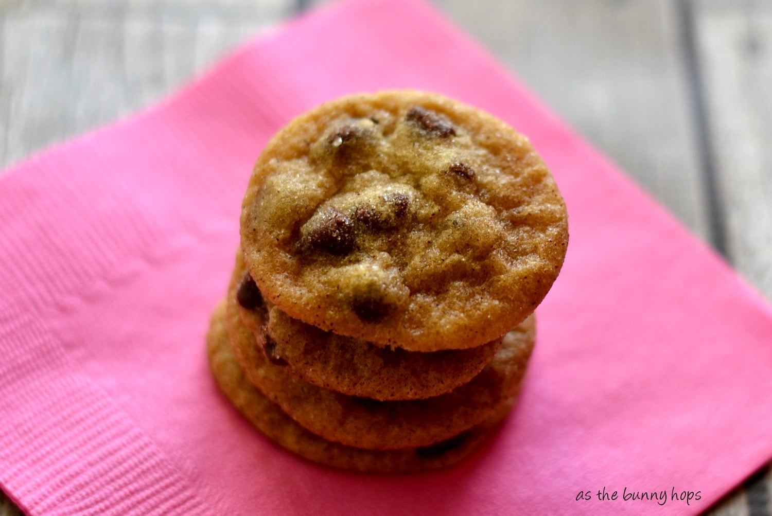 ... enjoying almost homemade chocolate chip snickerdoodles! Easy, right