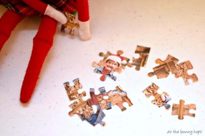 Elf Puzzle Pieces