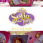 Sofia The First Mini Candy Buffet