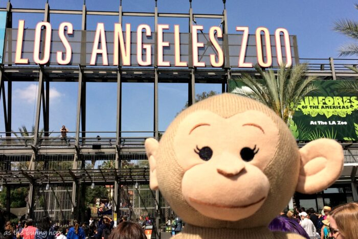 Celebrating Monkey Kingdom at the LA Zoo!