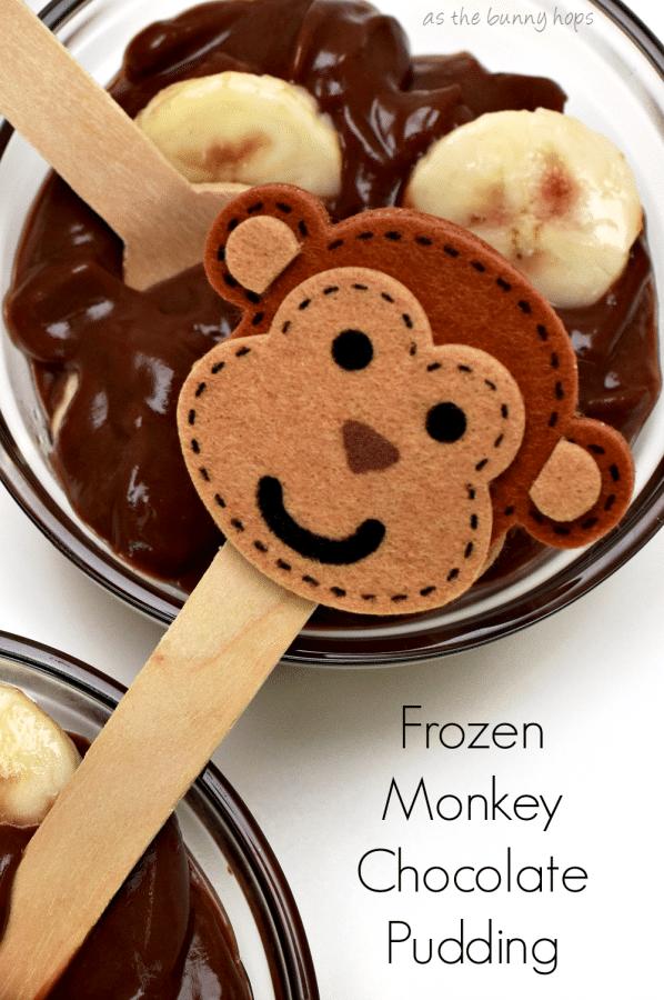 Frozen Monkey Chocolate Pudding