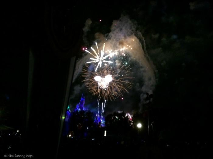 Hidden Mickey Fireworks