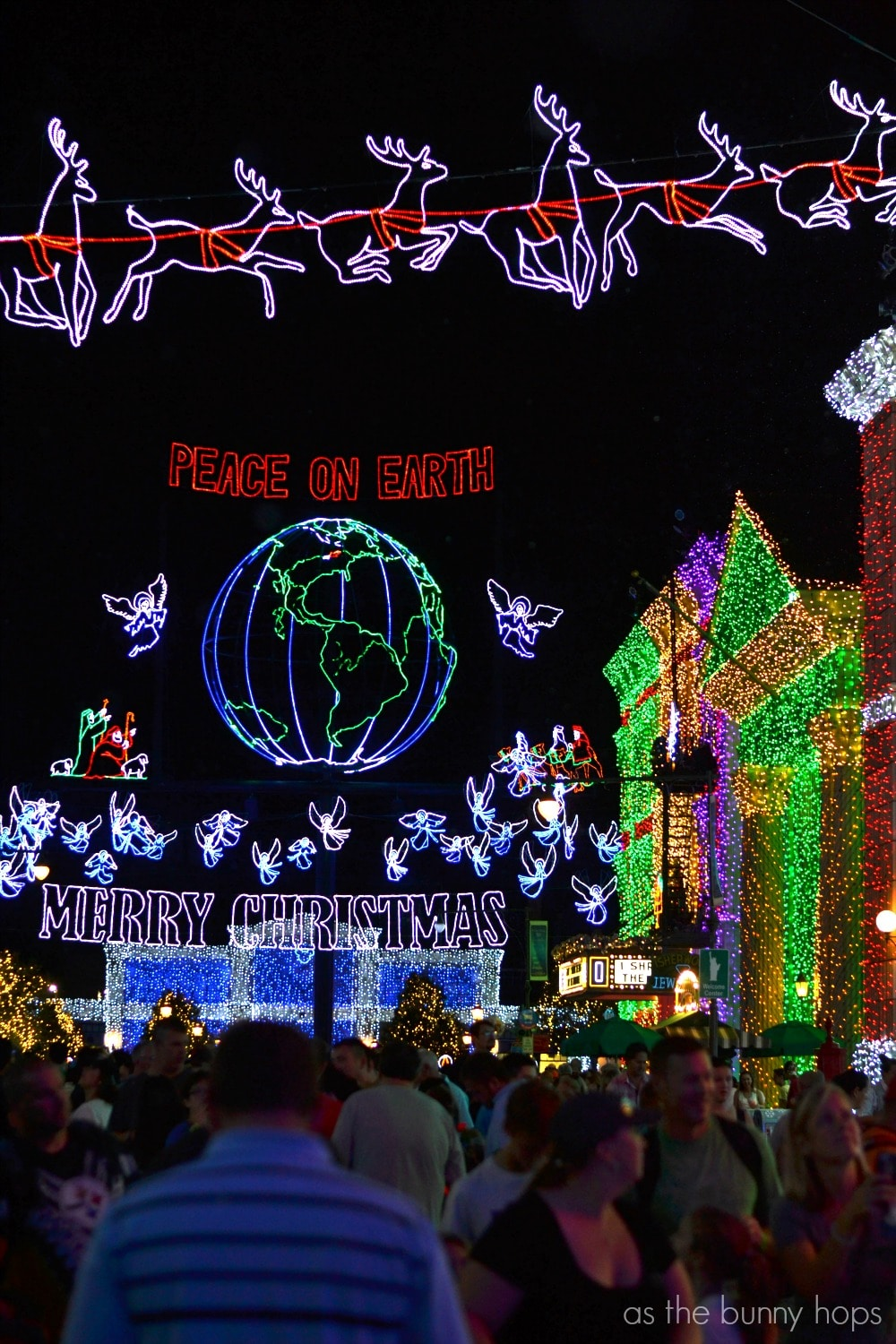 Of Course The Best Way To Experience The Osborne Family Spectacle Of  Dancing Lights Is To See And Hear It.
