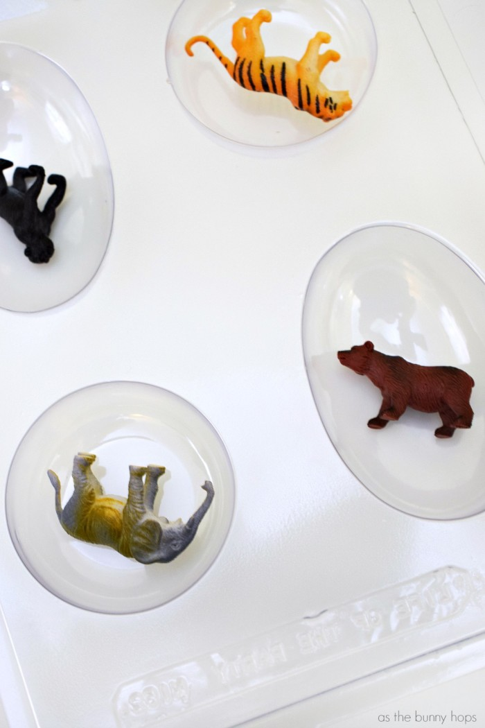 Animals in Soap Mold