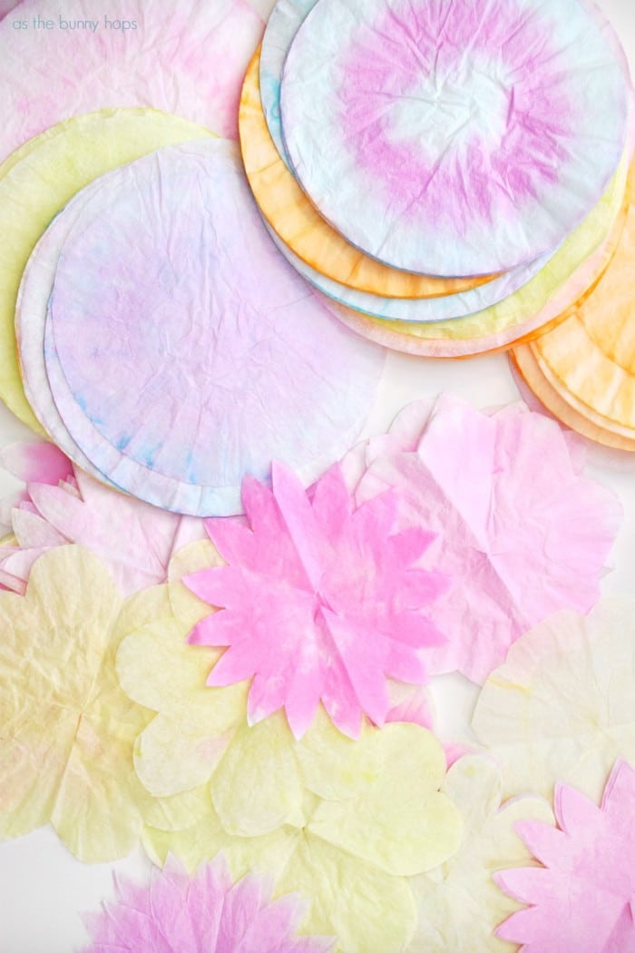 Dyed Coffee Filters