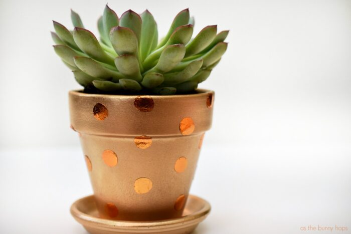 Gold and Copper Polka Dot Pot