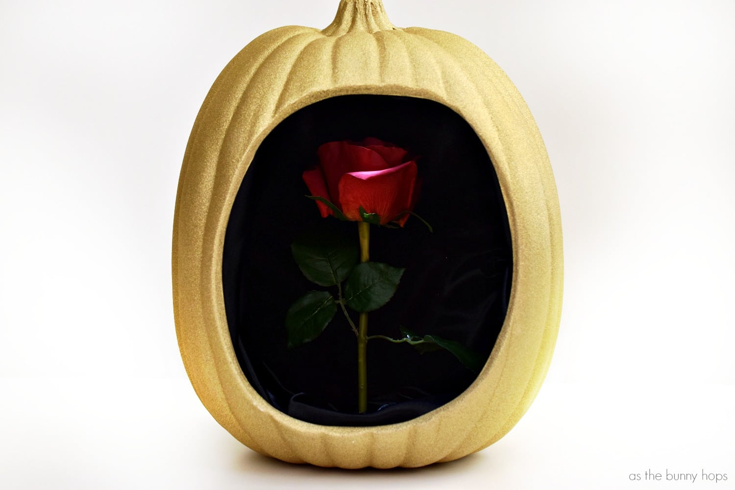 Beauty And The Beast Enchanted Rose Pumpkin As The Bunny