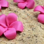 Moana-Inspired Plumeria Hair Flowers