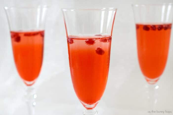 Persephone Sparkling Pomegranate Cocktail